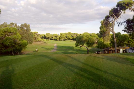 Campo de Golf Saler