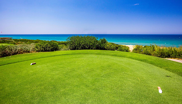 Signature Golf Courses The Bay Cours...