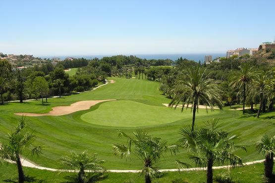 Golf DAro